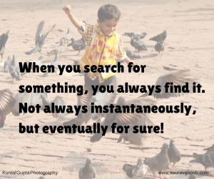 you-find-what-you-search-for